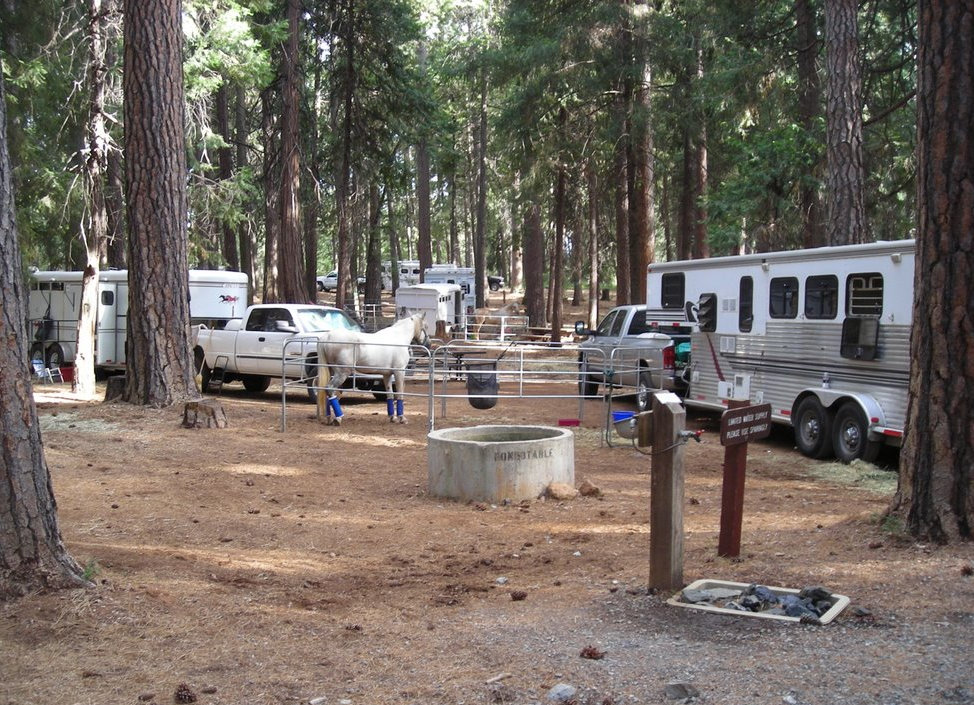 Trail Riding And Camping At Cypress Hills Trail Horse