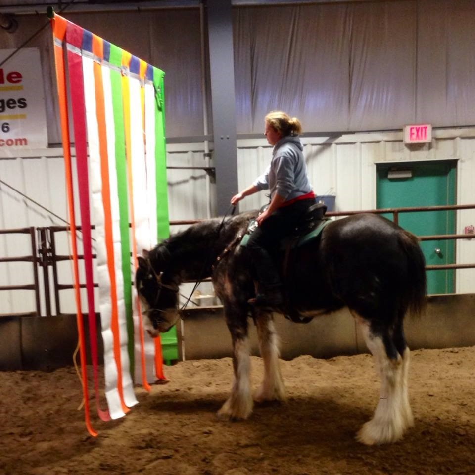 trail horse obstacles and challenges