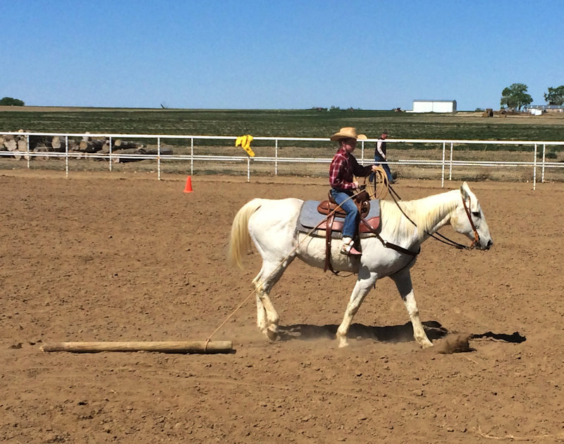 Dragging - Trail Horse Challenge